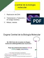 3 Dogma Central de La Biología Molecular-2010