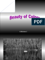 163791415-The-Beauty-of-Colours.pps