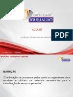 Suino - Aula 7 PDF