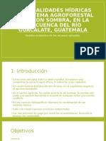 Externalidades Hídricas Del Sistema Agroforestal Café Con Sombra
