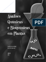 Analises Em Plantas -Neto
