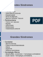 Grandes Sindromes