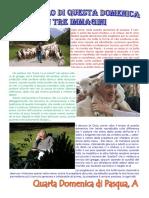 Vangelo in immagini - IV Domenica di Pasqua A.pdf