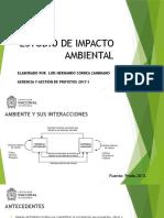 Estudio de Impacto Ambiental - Gerencia y gestión de proyectos