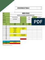 SIO-FR-04 Cronograma Minera Paraiso- Salud Ocupacional