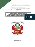 Tdr Expediente Técnico Polideportivo Jacas Grande