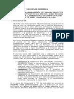 TDR Fichas de Proyectos SNIP