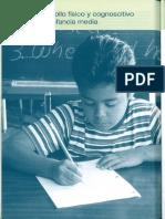 Capitulo 9 Desarrollo Fisico y Cognoscitivo