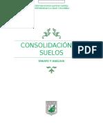 CONSOLIDACION VACCA (Autoguardado) (Recuperado)