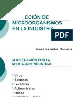 Selección de Microorganismos en La Industria
