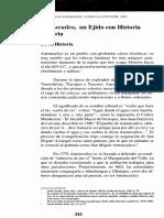 Anenecuilco 55.pdf