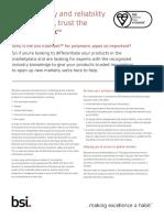 BSI Polymeric Factsheet UK En