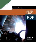 Guia Para La Implantacion de Norma Ohsas 18 001 en El Sector Metal
