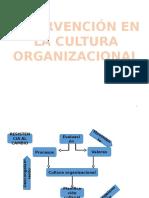 Intervencion en La Cultura Organizacional