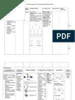 Estructura General de Las Principales Biomoléculas