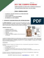 28996265-SISTEMA-ENDOCRINO.doc