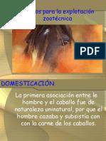 APAIIIEquinos 2008-2