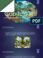 Capítulo 4 Análisis Estructural de Los Ecosistemas