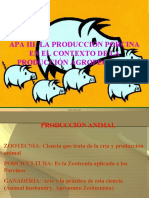 APAIIIPorcinos 2009-1