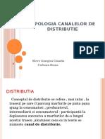 Tipologia Canalelor de Distributie