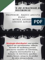 Variante de Strategie de Distribuie.pptx MITRIA Onodie
