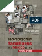 Libro Reconfiguraciones Familiares