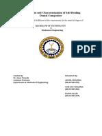 B.Tech Project Report.docx