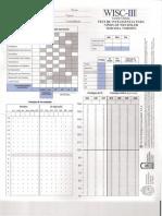 134561222-Protocolo-WISC-III-v-ch.pdf