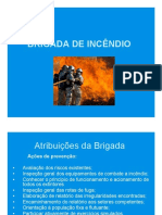 Brigada de Incendio(1)