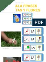 Señala Comprensión Frases Flores