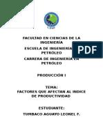 Factores Que Afectan Al Indice de Productividad.