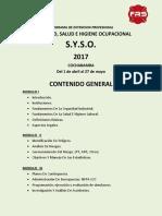 Programa Syso - Contenido General Cbba