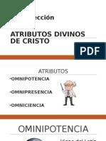 Clase 4 Doctrina 1