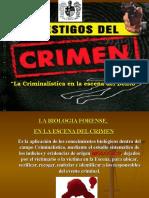 La Criminalistica en La Escena Del Crimen