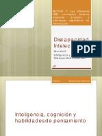 Discapacidad Intelectual 2 Diapositivas 1