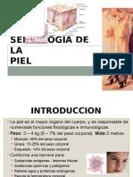 Semiologia de La Piel