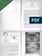 O Que Eh a Voz Mara Behlau e Paulo Pontes.pdf