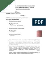 Microbiologia de Alimentos Informe 1