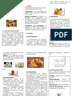 322451506-Los-Glucidos-Triptico.docx