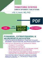 Somatomotoric System 2
