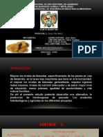 Trabajo de Mercadotecnia (1).pptx