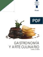 Gastronomia y Arte Culinario