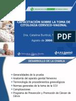 charla toma_ccv.pdf