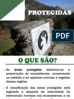 16_areas_protegidas.pdf