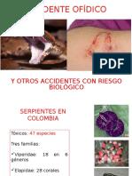 Accidente Ofidico, Picaduras, Mordeduras y Arañazos