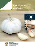 Production Guide - Garlic