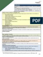 Automatizacion fichas_icolombia.pdf
