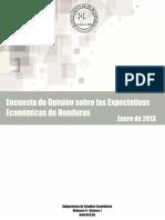 Encuesta Expe Econ01 2013