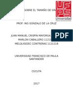 TAMAÑO DE GRANO.docx