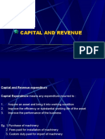 capital_and_revenue.ppt